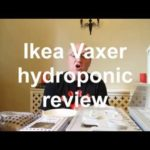 Ikea Vaxer hydroponic growing kit product review