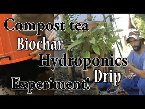 Compost Tea & Biochar Hydroponics – Amazing Results!