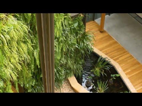 Indoor Green Wall Maintenance