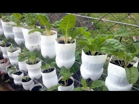 Best ideas! – Brilliant Ways To Reuse Plastic Bottles Garden