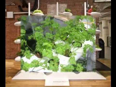 Hydroponic vertical garden ideas