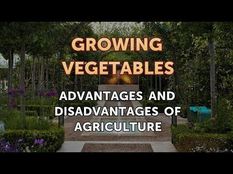 Advantages and Disadvantages of Agriculture