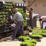 Florafelt Pro System Vertical Garden Installation