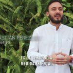 Curso de Jardines Verticales en Bogotá: 10 razones para hacerlo