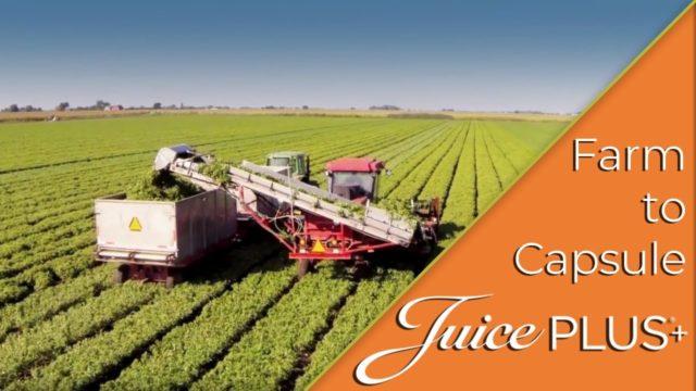 Farm to Capsule – Farm Fresh Nutrition   Juice Plus+