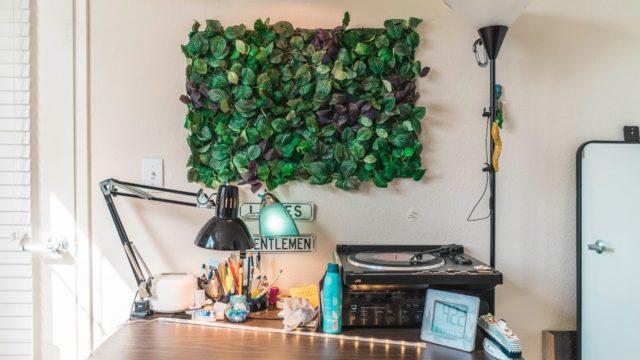minimalist ikea wall plants