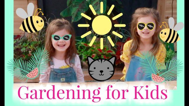 Seeding for Kids   Gardening for Kids   the Window Garden   Seed Starter Kit for Kids