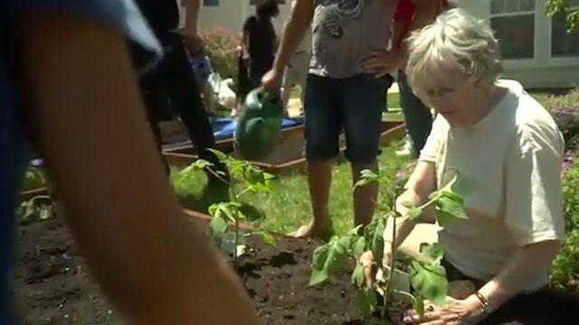 Therapeutic Health Benefits of Gardening for Seniors | Spring Hills Senior Communities
