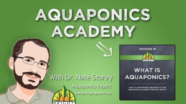 Aquaponics Academy #1: What is Aquaponics?