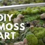 DIY MOSS ART | DONE SIMPLY