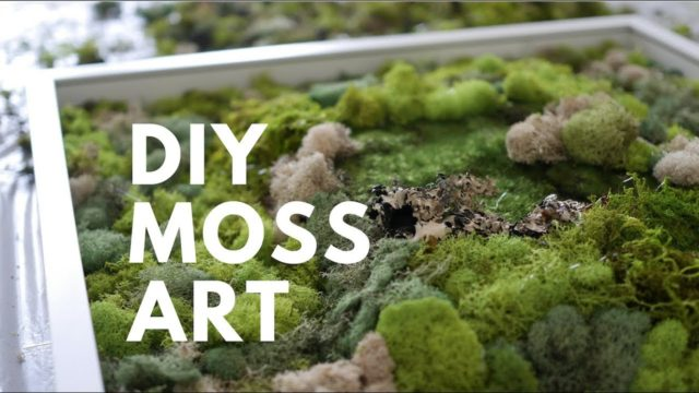 DIY MOSS ART   DONE SIMPLY