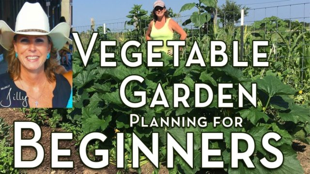 Planning a Vegetable Garden for Beginners – Easy to Grow Vegetables for First Time Gardener