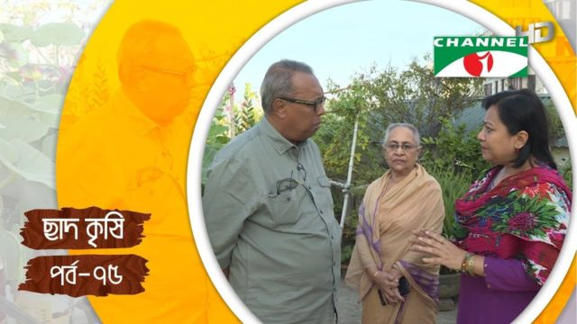 Rooftop farming || EPISODE 75 || HD || Shykh Seraj || Channel i || Roof Gardening || ছাদকৃষি ||
