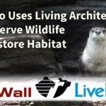 Wildlife Habitat Restoration at John Ball Zoo through Green Roofs and Living Walls