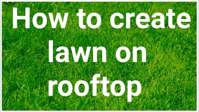 How to create lawn on rooftop no leakage & no high cost