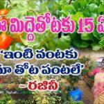 15 years old organic terrace garden || Vegetables, Fruits, flowers || Rajini || KPHB – HYD