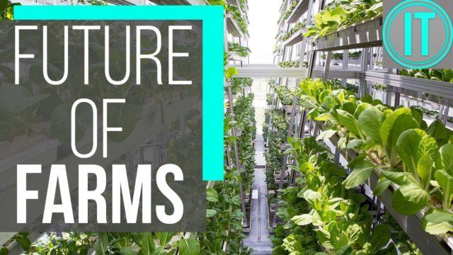 Vertical Farms Inside Of Target?
