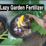 GROW Compost & Fertilize in the Vegetable Garden Composting in PLACE