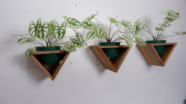 DIY Indoor and Outdoor Wooden Triangle Planters Wall Hanging Design