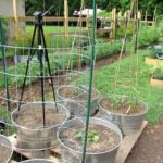 10 Trellising Options for Containers & Earth Beds: Tomatoes, Cucumbers, Squash, Melons & More!