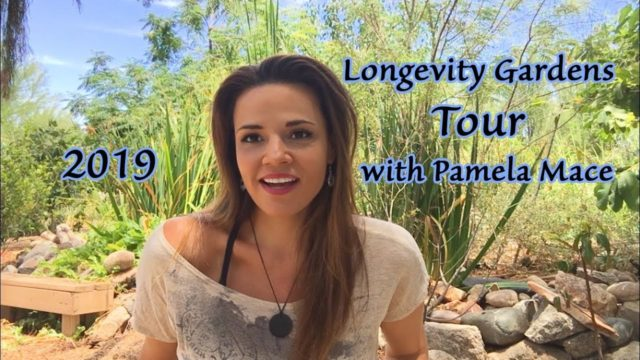 Longevity Gardens Tour 2019 with Pamela Mace