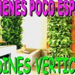 Beneficios de los Jardines Verticales o huerto vertical 🥝Muros Verdes  DIY