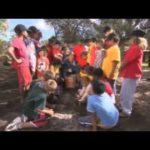 The Garden Gurus – School Gardening