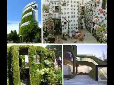 Vertical hydroponic garden ideas