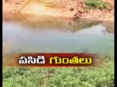Kadapa farmer's overcoming drought with farm ponds – జైకిసాన్ – on 1st May 2015