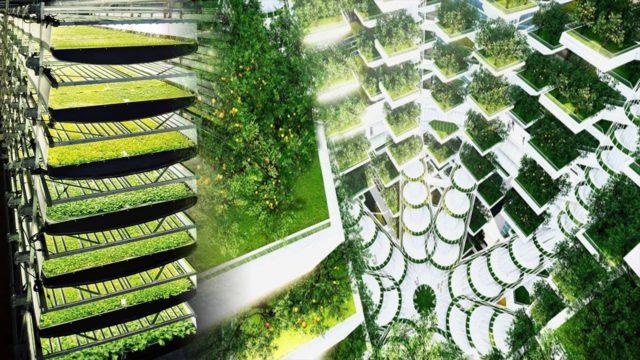 The Rise Of Robotic Indoor Farming Is Gaining Momentum Worldwide