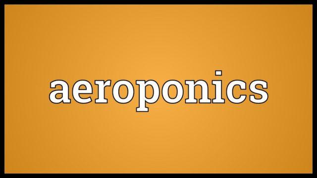 Aeroponics Meaning