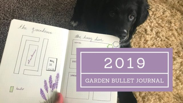 Garden Journal 🌿 Spring 2019 // Angels Grove Co