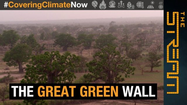 Why is Africa building a 'Great Green Wall' ? | The Stream