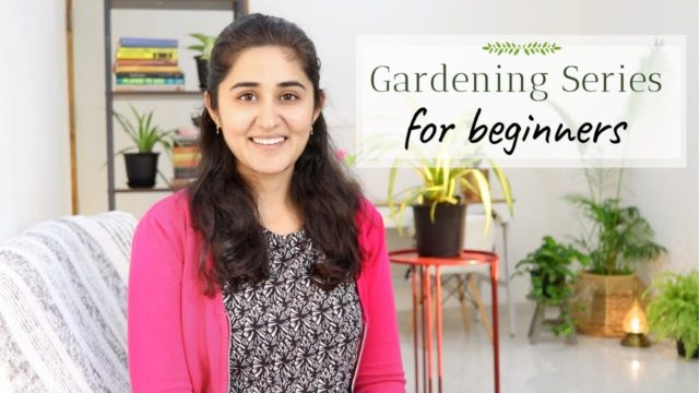 Learn How to Garden.com