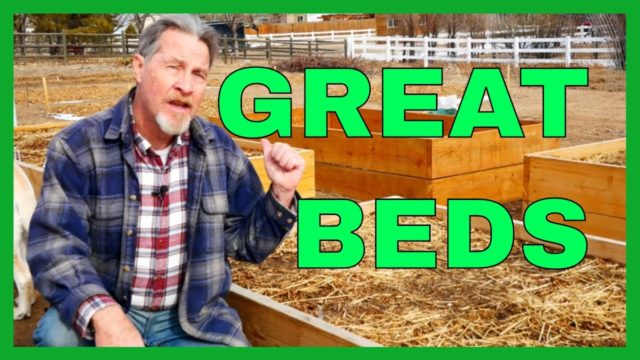 Why Raised Beds Are Best for Gardening (10 Benefits)