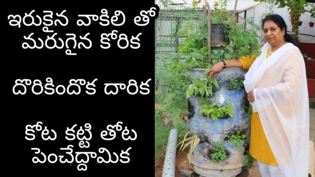 Tower Garden- Stunning Home Garden Ideas/ Balcony Garden /Grow Vegetable Garden in Single Barrel