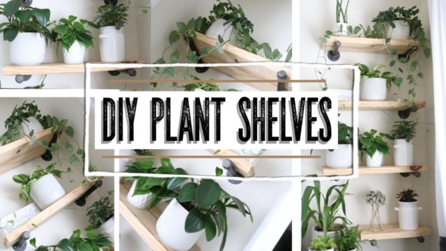 """How To"" DIY plant shelves 🌿"