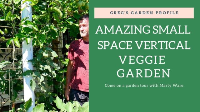GROWING VERTICAL Small Space Veggie Garden Profile Australia