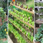 40 Best DIY Design Ideas for a Vegetable Garden | diy garden