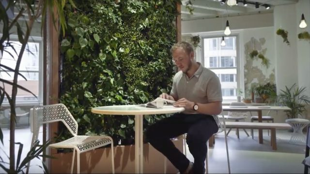 Connecting Living Walls & IoT Data to the Cloud