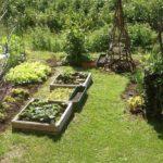 Gardening. Small Space: Vertical Garden. Container Gardening. Vegetable Gardening.