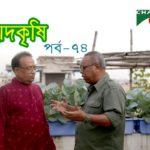 Rooftop farming || EPISODE 74 || HD || Shykh Seraj || Channel i || Roof Gardening || ছাদকৃষি ||