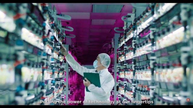 Interesting Jobs Series – Indoor Farming at Panasonic