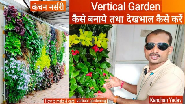 How to make vertical garden & decorate your wall with plants, Wall garden, Green wall