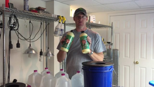 How To Get Started In Hydroponics
