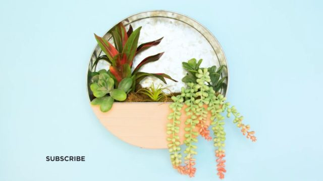 Succulent Wall Planters How-To | Michaels