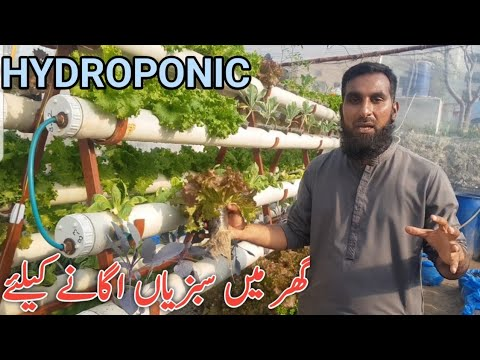 Hydroponic System by Dr. Sajid Iqbal Sandhu |Hydroponics farming, hindi/urdu, IR FARM