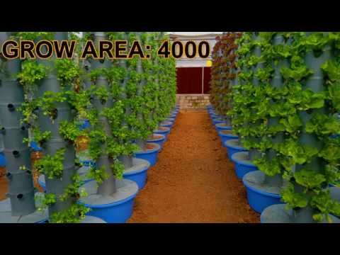 One Acre Aeroponic Farm Project