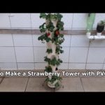 How to Make Vertical Garden from PVC Pipe – Strawberry