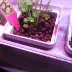 Prosumer's Choice Indoor Garden Pod Kit #prosumerschoiceusa